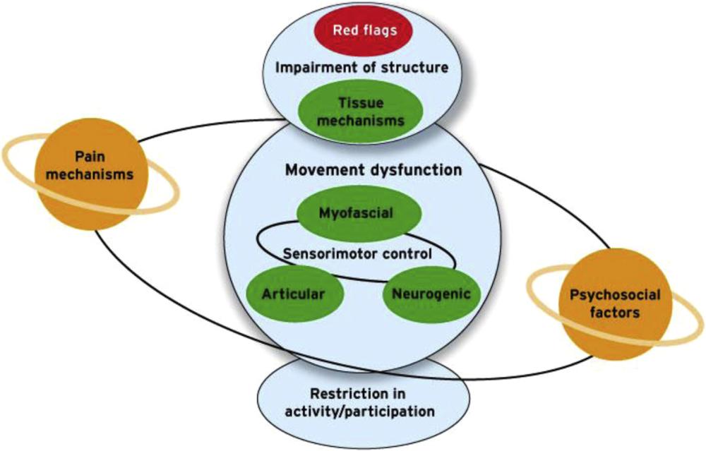 El modelo planetario en terapia manual (I): un enfoque basado en el razonamiento clínico.