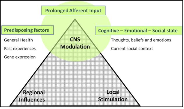 modulación central