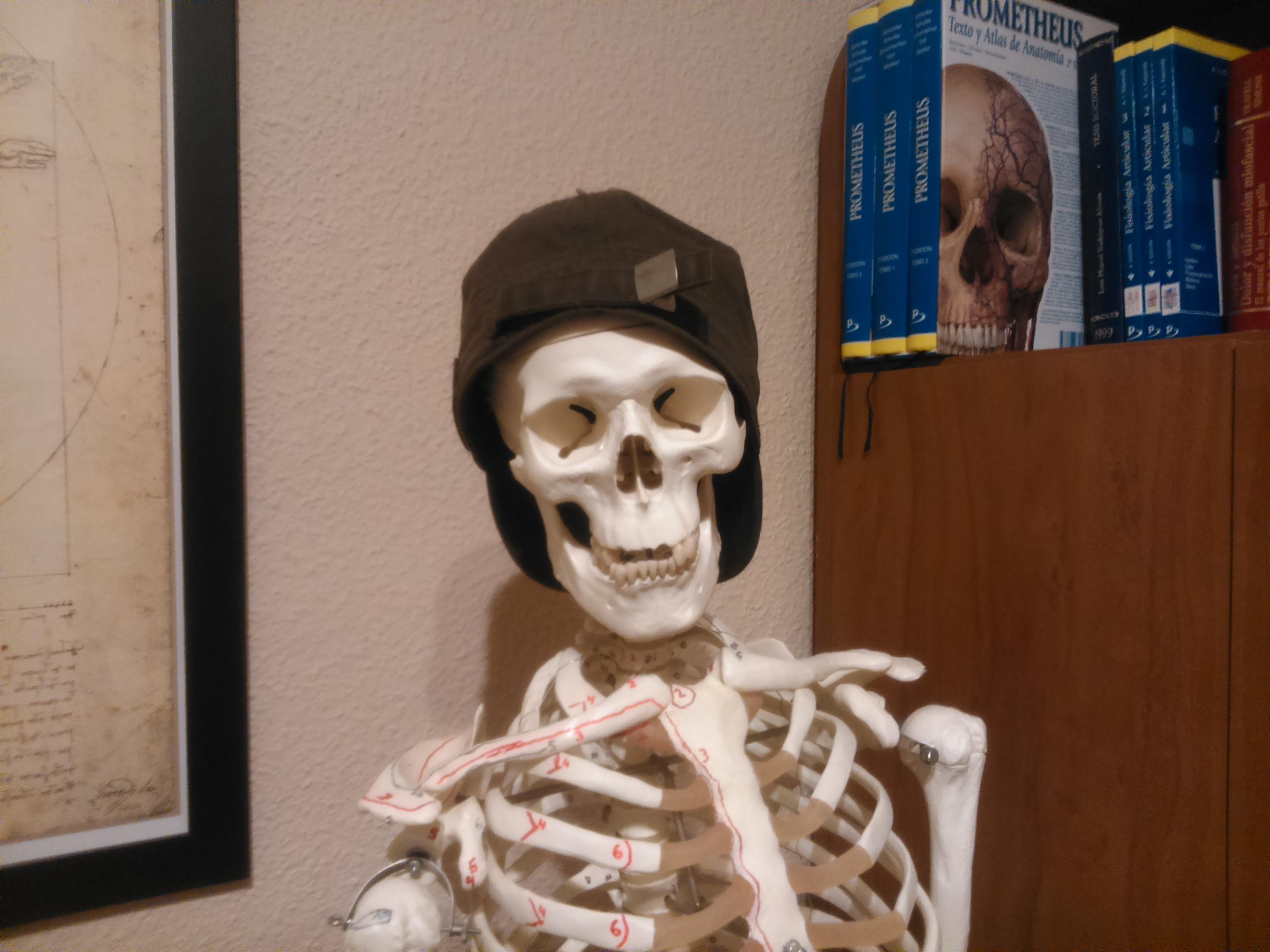 Mi querido Pepito y yo: un verdadero amor por la anatomía humana ...