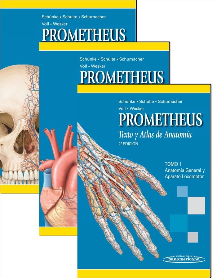 prometheus-anatomia-libro-pdf-12279-MLA20056533309_032014-F