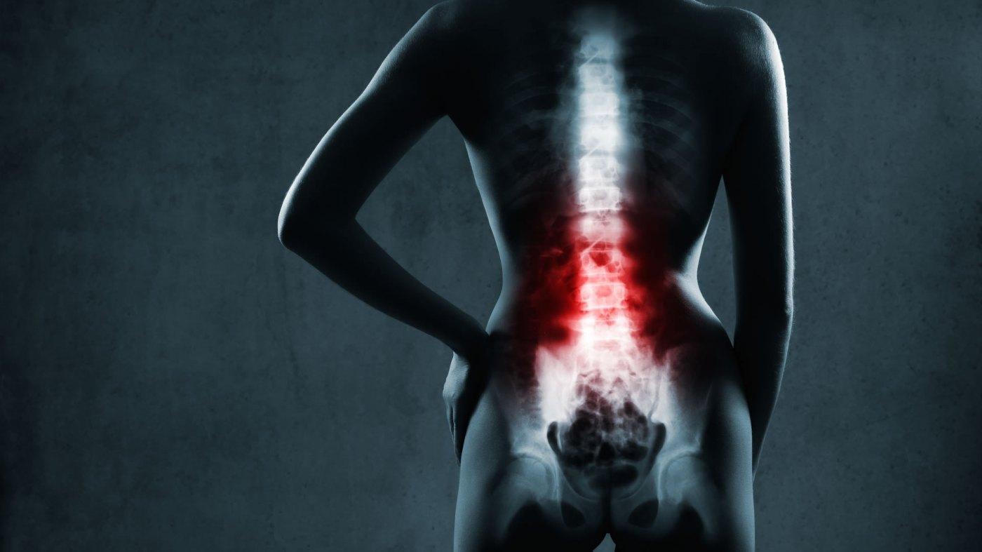anamnesis – Fisioterapia en constante movimiento